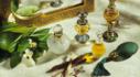 향기를 쓱 드림 백화점동일정품 우주의 모든 향수