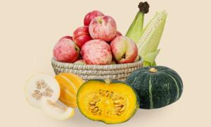 농부마음 제철농산물대전 식탁위에행복