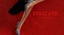 스타카토 2020 FW NEW ARRIVALS