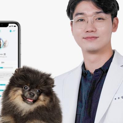 핏펫 SSG 런칭! 수의사가 만든 건강간식&검진  특가 멍냥검진! 집에서 건강검진!