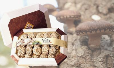 편백나무 숲에서 자란 버섯 표고버섯선물세트 소중한 분께 마음을 드립니다