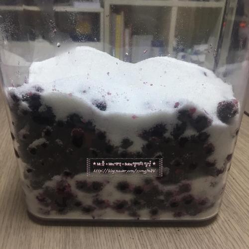 냉동아로니아 생아로니아 수제과일청 만드는법 / 아로니아효능