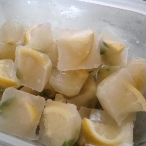 레몬민트얼음(모히토맛 얼음) 만들기
