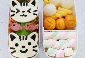 고양이 캐릭터도시락(=^오^=)