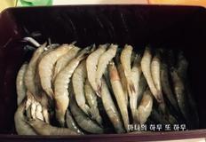 [대하] 제철 새우로 만든 맛있는 간장새우 만드는 법! 맛있는 간장게장, 간장새우
