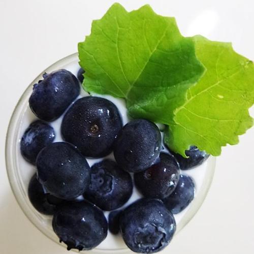 다이어트 간식 블루베리 요거트 시리얼 만들기