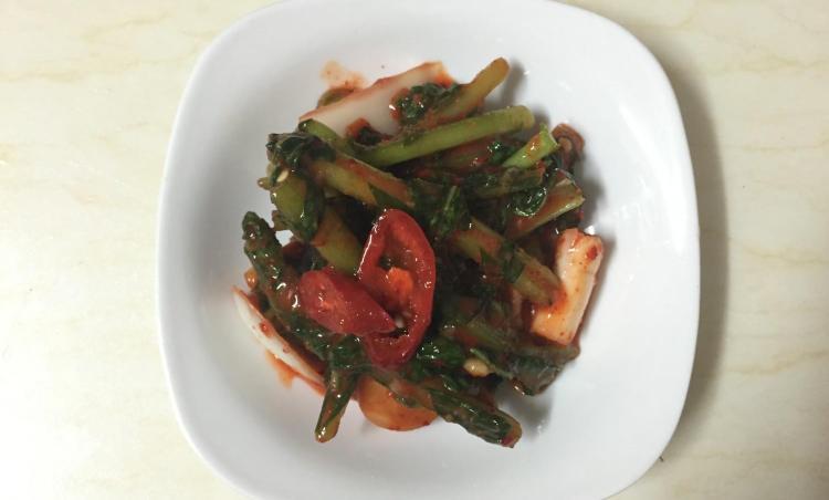 초간단 열무김치 맛있게 만들어 먹기 (생에 첫 열무김치 담구기)