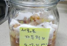 [수제청 만들기] 새콤달콤 자두청 만들기☆