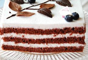 초코생크림 케이크
