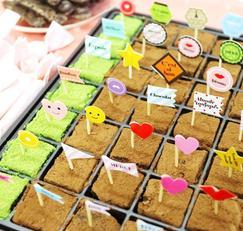 발렌타이데이 초콜릿만들기,파베초콜릿만들기
