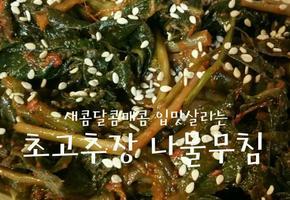 만능 초고추장 나물양념 황금레시피, 왠만한 나물은 무조건 맛있어진다는!