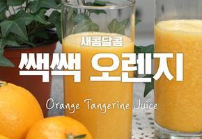 쌕쌕~ 불어라~♬ 오렌지~ 열풍을~♪ 쌕쌕오렌지