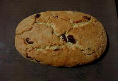 두번구운 쿠키 크렌베리 비스코티!