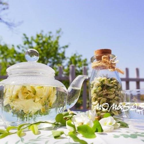은은한 향기가 감도는 ~아카시아꽃차 !