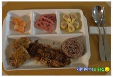 치킨커틀릿/치킨까스:참 맛있는 다이어트