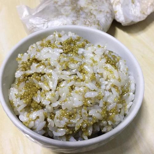 차조밥 솥밥짓기