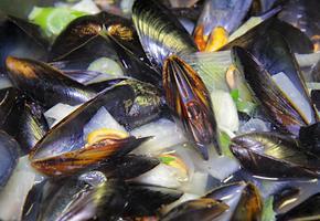 홍합탕 끓이기 / Mussel Soup