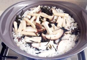 #냄비밥 #버섯밥 #톳밥 #톳버섯냄비밥만들기 #채소육수를 넣고 냄비에 끓여낸 갓지은 버섯톳밥의 맛은 찬이 없어도 그