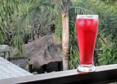 스타벅스 : 패션티 레몬에이드 ( Passion Tea lemonade) 만들기