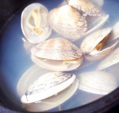 #국물요리 #바지락요리 #바지락조개탕만들기 #조개탕만들기 #초간단조개탕 #청양고추는 꼭 넣어 주세요!!