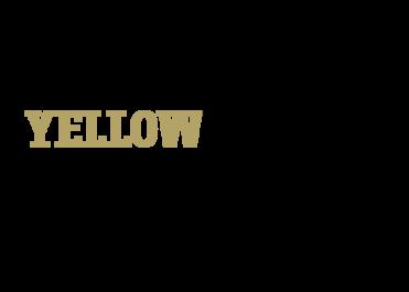 [옐로우코너] LIMITIED EDITIONS UP TO 50%