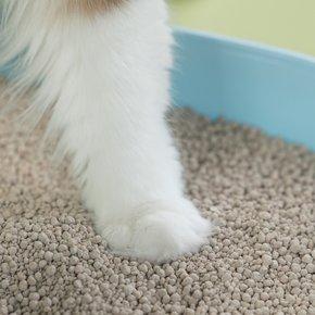 [이마트가 직접수입한]몰리스 고양이 모래 8L
