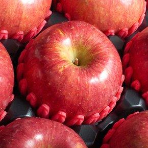 -9월27일 오전12시 주문마감- 신선한 사과 배 선물세트 7호[사과6과배6과] 4.8kg
