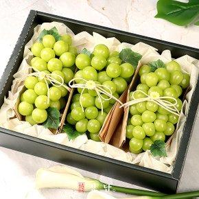 [25일 오전9시 결제건까지 명절전 배송][정담][과일愛]SSG단독 명품 과일선물세트 달콤가득 샤인머스켓 2kg (2~3송이) - 보자기포장